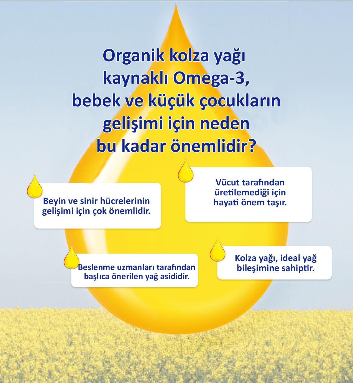 Omega 3 Nedir Kaynakları Nelerdir